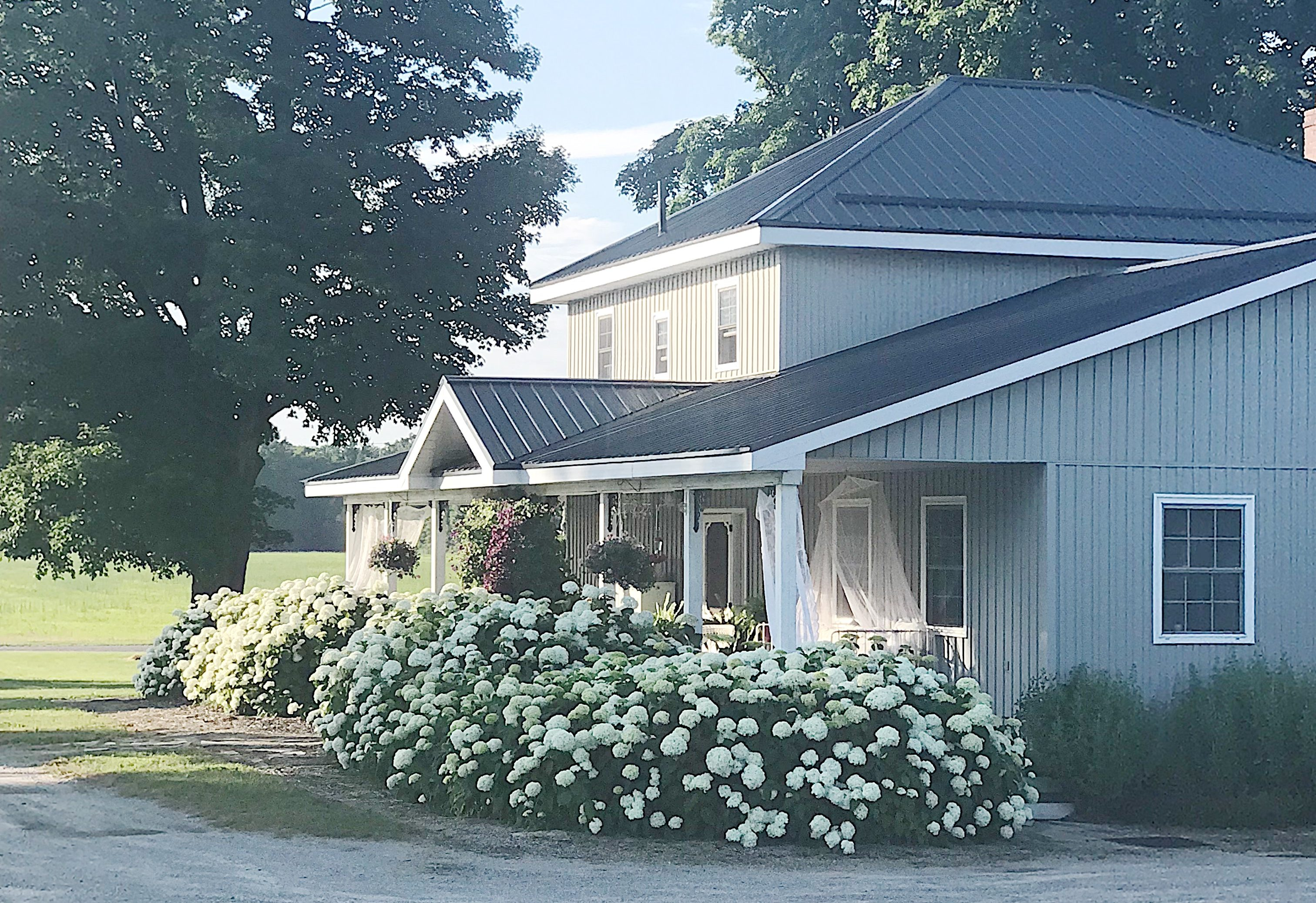 The Hydrangea Farmhouse